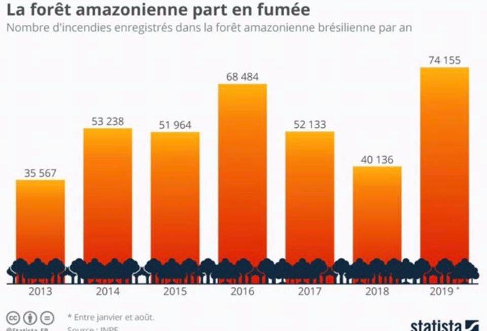 À propos des immenses feu de forêt en Amazonie